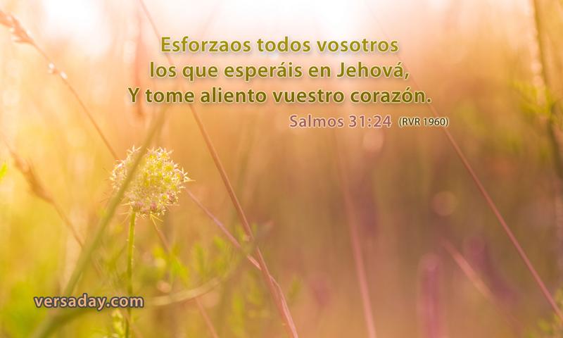 Salmos 31 24 Versiculo Para Agosto 3