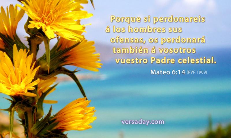 Mateo 6 14 Versiculo Para Octubre 12