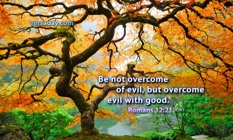 overcome evil with good quotes